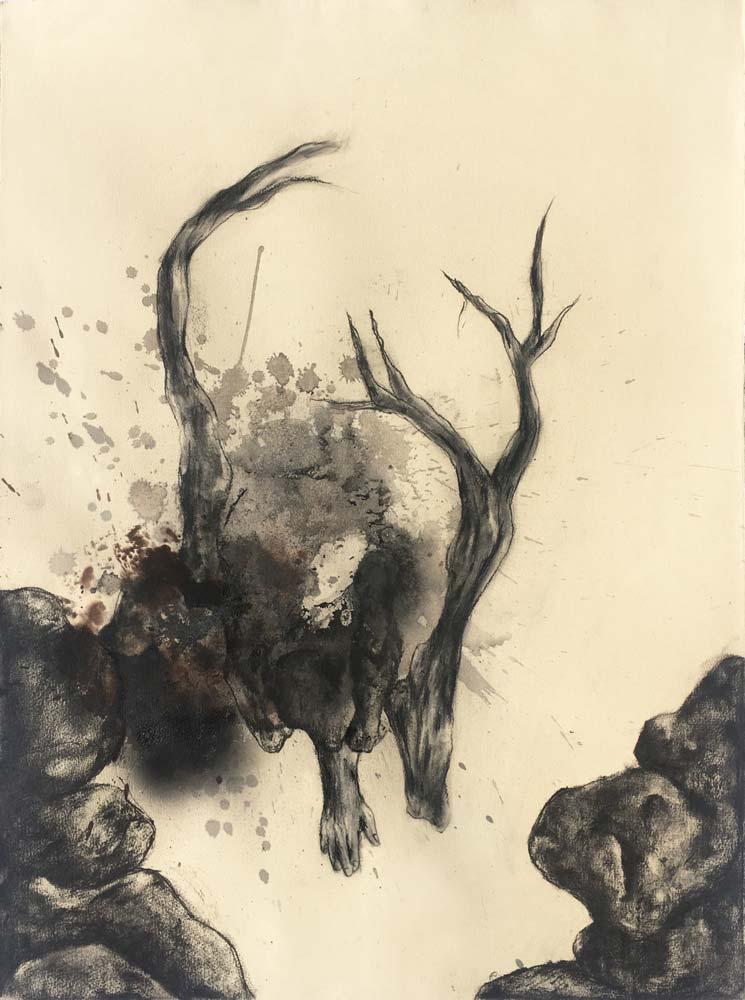 Muriel POLI : Sans titre – 2017 - Fusain et encre sur papier – 75 x 56